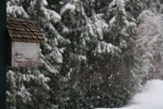 birdhouse in the snow