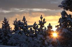 Sunrise Christmas Morning 2010