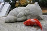 My poor dead fishie...